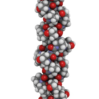 collagen model protein, chemical structure.